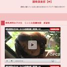 調教倶楽部【M】